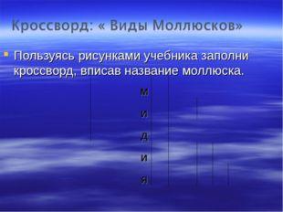 Пользуясь рисунками учебника заполни кроссворд, вписав название моллюска.