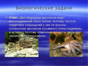 Ответ: Двустворчатые моллюски ведут малоподвижный образ жизни, поэтому частот