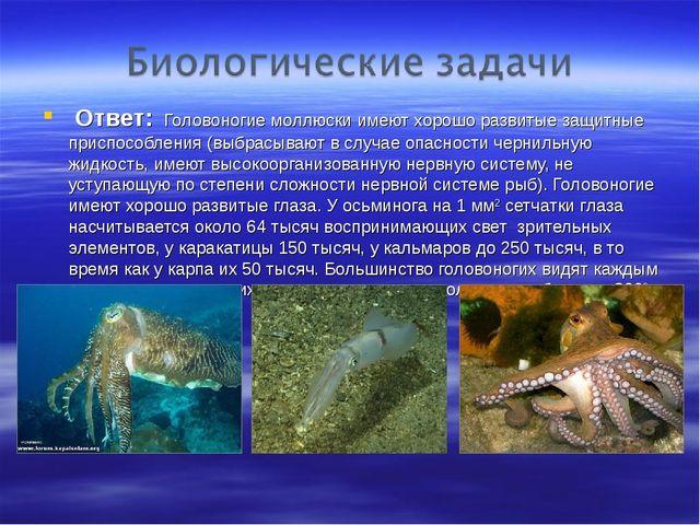 Ответ: Головоногие моллюски имеют хорошо развитые защитные приспособления (в...