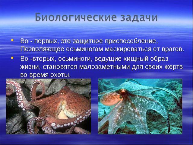 Во - первых, это защитное приспособление. Позволяющее осьминогам маскироватьс...