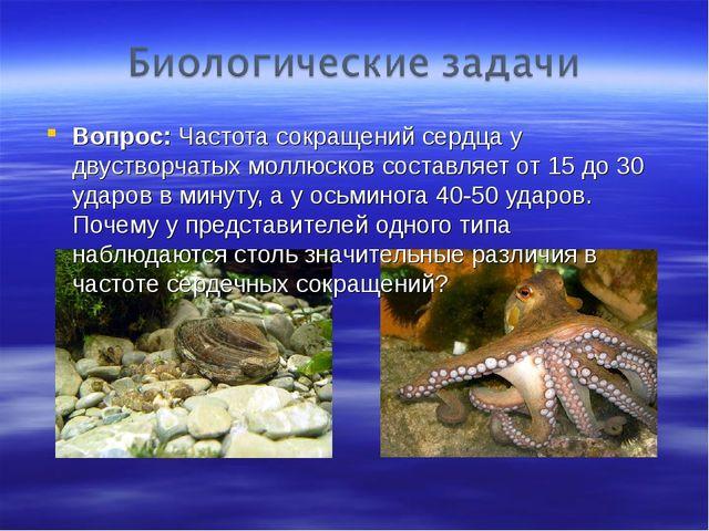 Вопрос: Частота сокращений сердца у двустворчатых моллюсков составляет от 15...