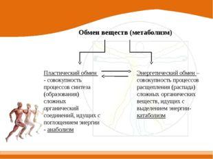 Обмен веществ (метаболизм) Пластический обмен - совокупность процессов синтез