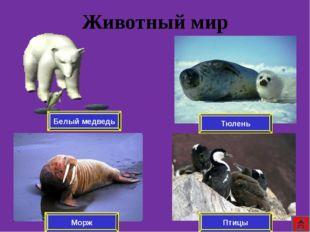 Литература Интернет ресурсы http://fictionbook.ru/ http://rusk.ru/ http://www