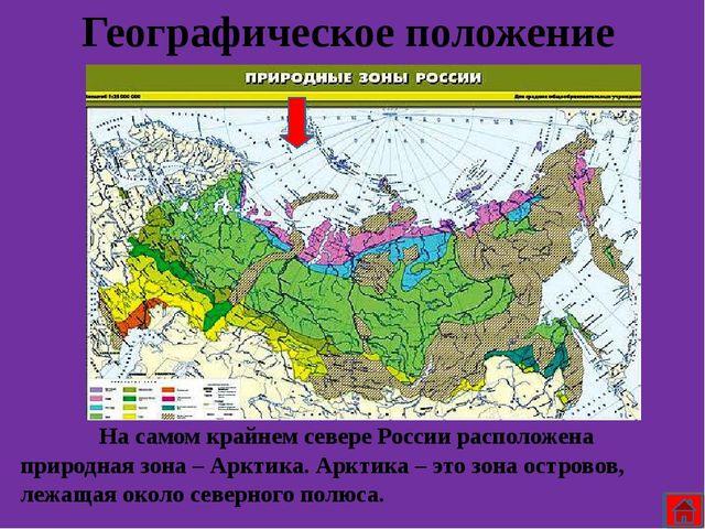 Растительный мир Арктика очень бедна растениями, здесь практически ничего не...