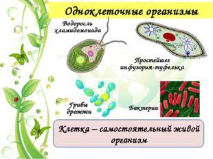 Признаки живой природы 2. Определенный химический состав живых организмов бе