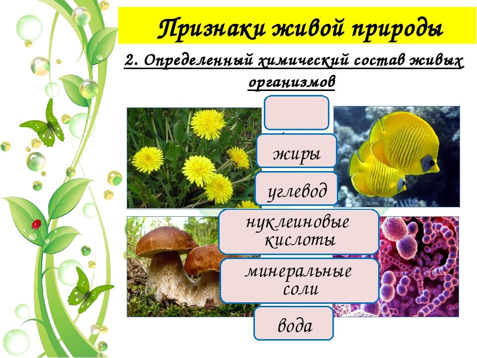 Признаки живой природы 4. Раздражимость Раздражимость – способность организм...