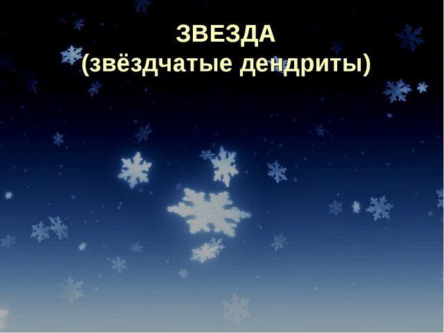 ЗВЕЗДА (звёздчатые дендриты)