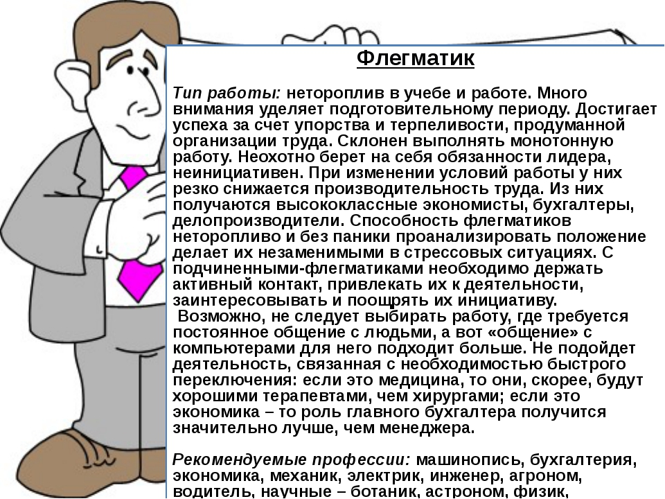 Флегматик Тип работы: нетороплив в учебе и работе. Много внимания уделяет по...