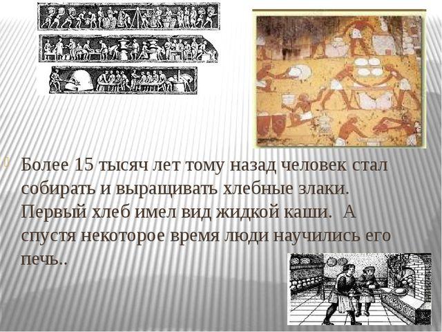 Более 15 тысяч лет тому назад человек стал собирать и выращивать хлебные злак...