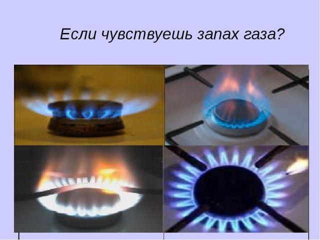 Если чувствуешь запах газа?