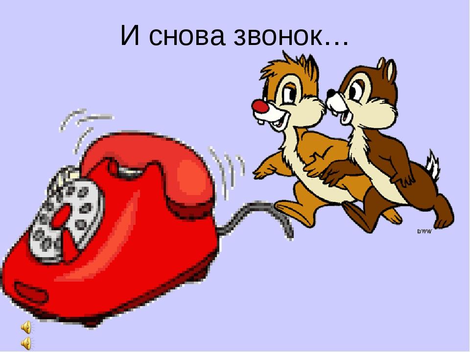 И снова звонок…