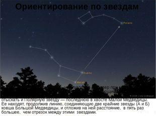 Ориентирование по звездам Для того, чтобы определить направление на север при