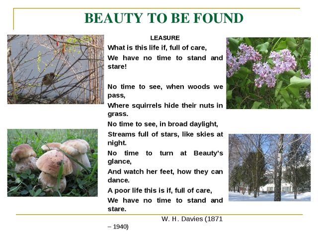 BEAUTY TO BE FOUND LEASURE What is this life if, full of care, We have no tim...