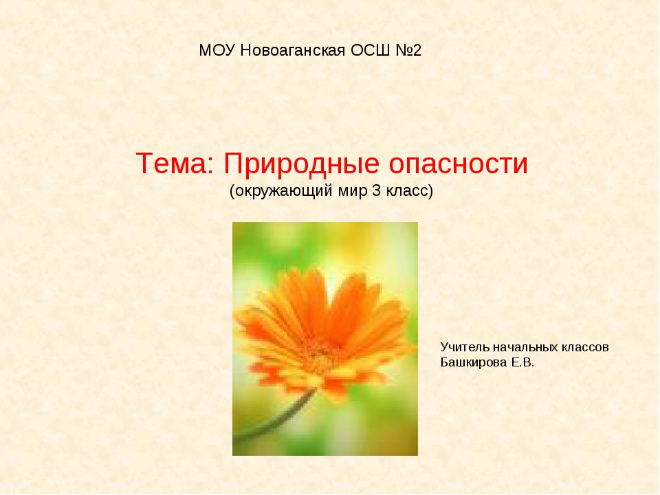Тема: Природные опасности (окружающий мир 3 класс) МОУ Новоаганская ОСШ №2 Уч...