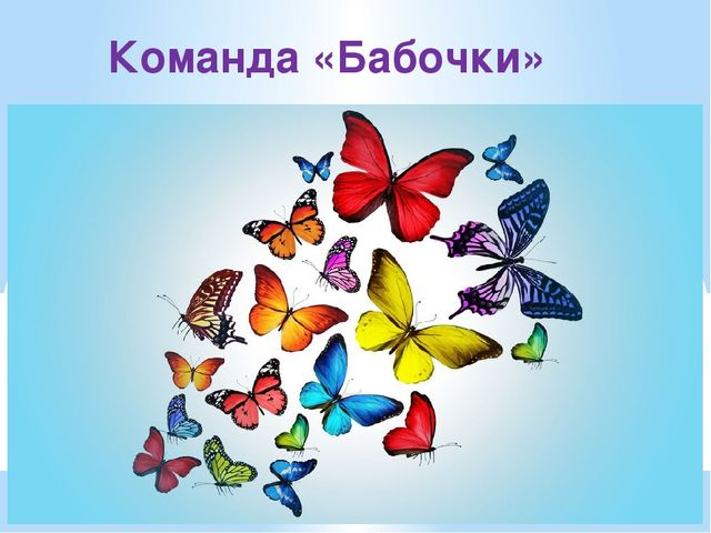 Команда «Бабочки»