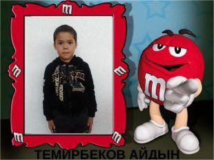 ТЕМИРБЕКОВ АЙДЫН