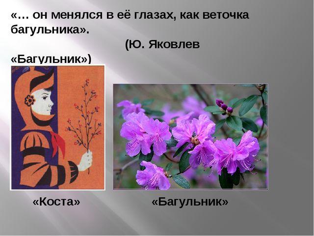 «… он менялся в её глазах, как веточка багульника».  (Ю. Яковлев «Багульни...