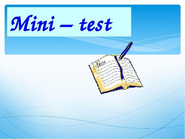 Mini – test