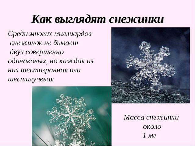 Как выглядят снежинки Среди многих миллиардов снежинок не бывает двух соверше...