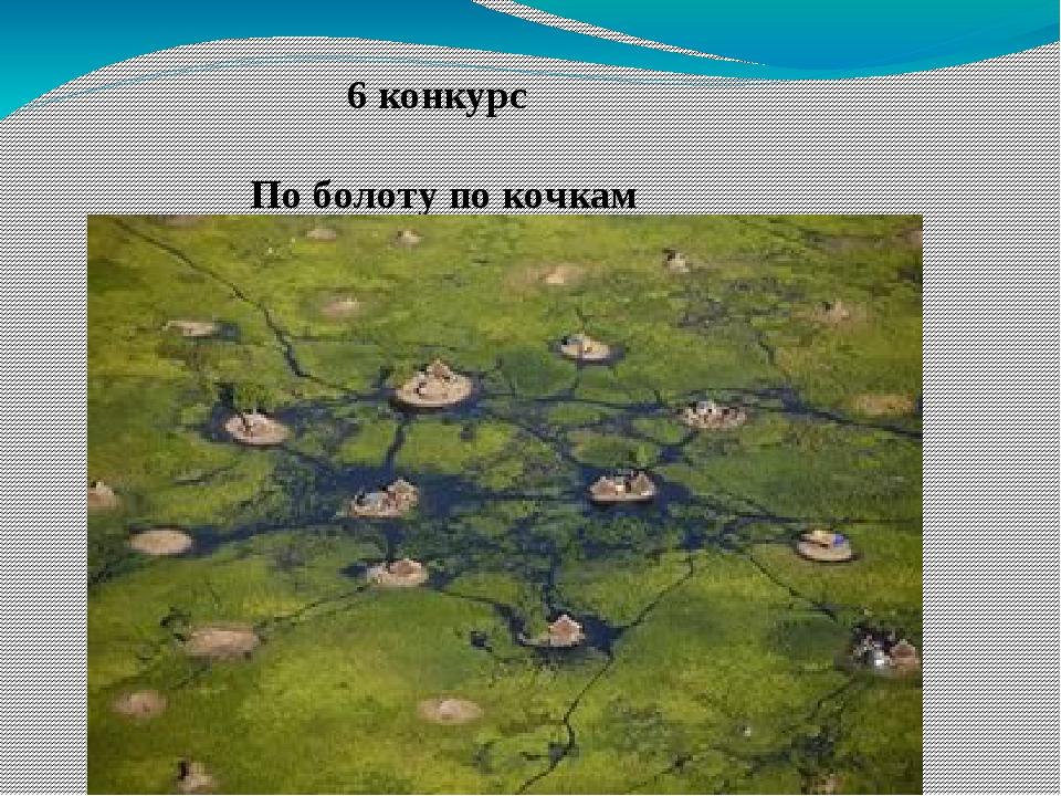 6 конкурс По болоту по кочкам