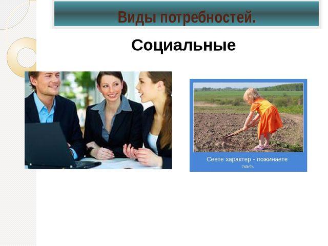 Социальные Виды потребностей.