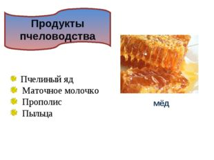 Продукты пчеловодства мёд Пчелиный яд Маточное молочко Прополис Пыльца