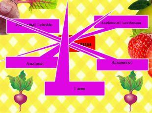 Қызылша Алабота тұқымдасына 2 жылдық өсімдік Асханалық Азықтық Қант