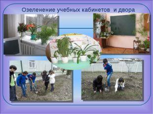 Озеленение учебных кабинетов и двора