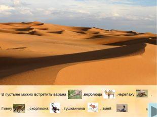 * В пустыне можно встретить варана ,верблюда ,черепаху , Гиену , скорпиона ,