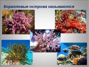 Коралловые острова называются РИФЫ