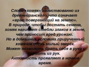 Слово «хомяк» заимствованно из древнеиранского, что означает «враг, повергаю