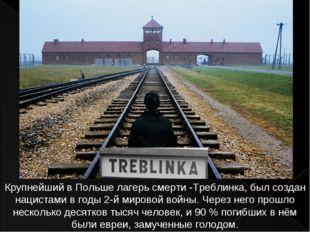 Крупнейший в Польше лагерь смерти -Треблинка, был создан нацистами в годы 2-й