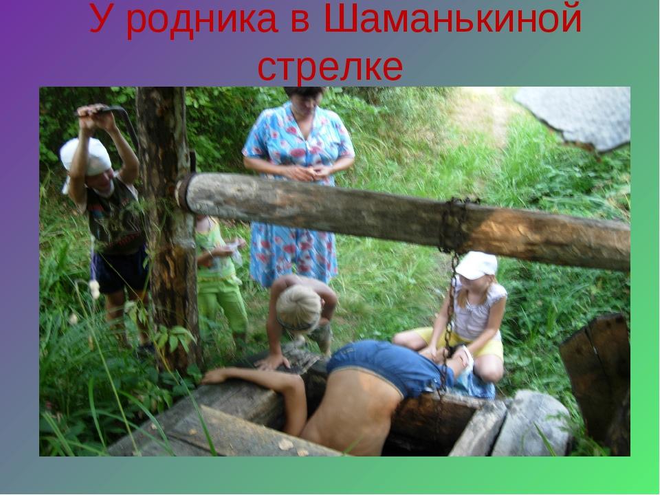 У родника в Шаманькиной стрелке