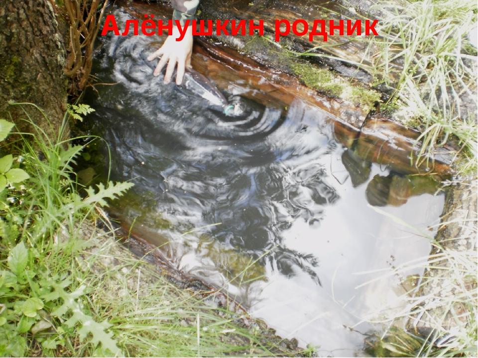 Алёнушкин родник