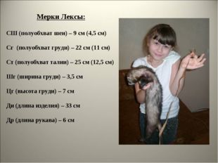 Мерки Лексы: СШ (полуобхват шеи) – 9 см (4,5 см) Сг (полуобхват груди) – 22