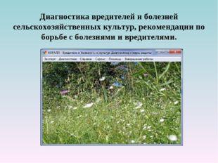 Диагностика вредителей и болезней сельскохозяйственных культур, рекомендации