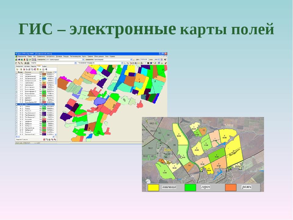 ГИС – электронные карты полей