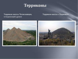 ТерриконшахтыЧелюскинцев, огнедышащий дракон Террикон шахты «Лидиевка» Терр