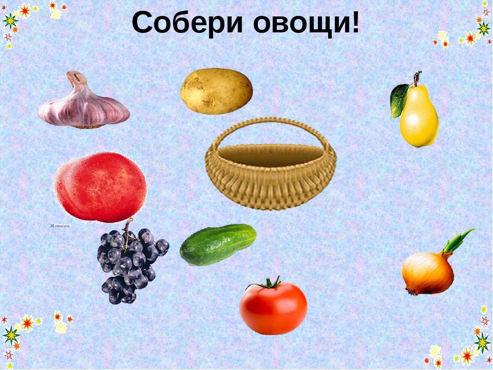 Собери овощи!