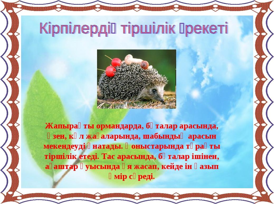 Жапырақты ормандарда, бұталар арасында, өзен, көл жағаларында, шабындық арасы...