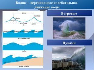 Волна – вертикальное колебательное движение воды Ветровые Цунами
