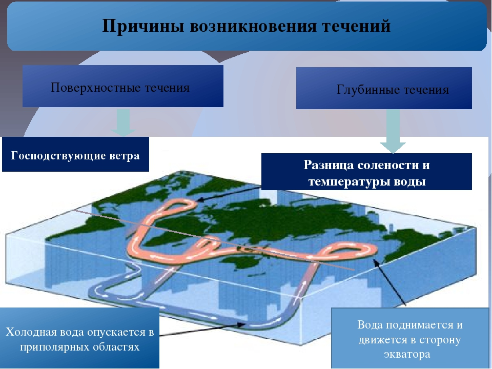 Причины возникновения течений Разница солености и температуры воды Холодная...