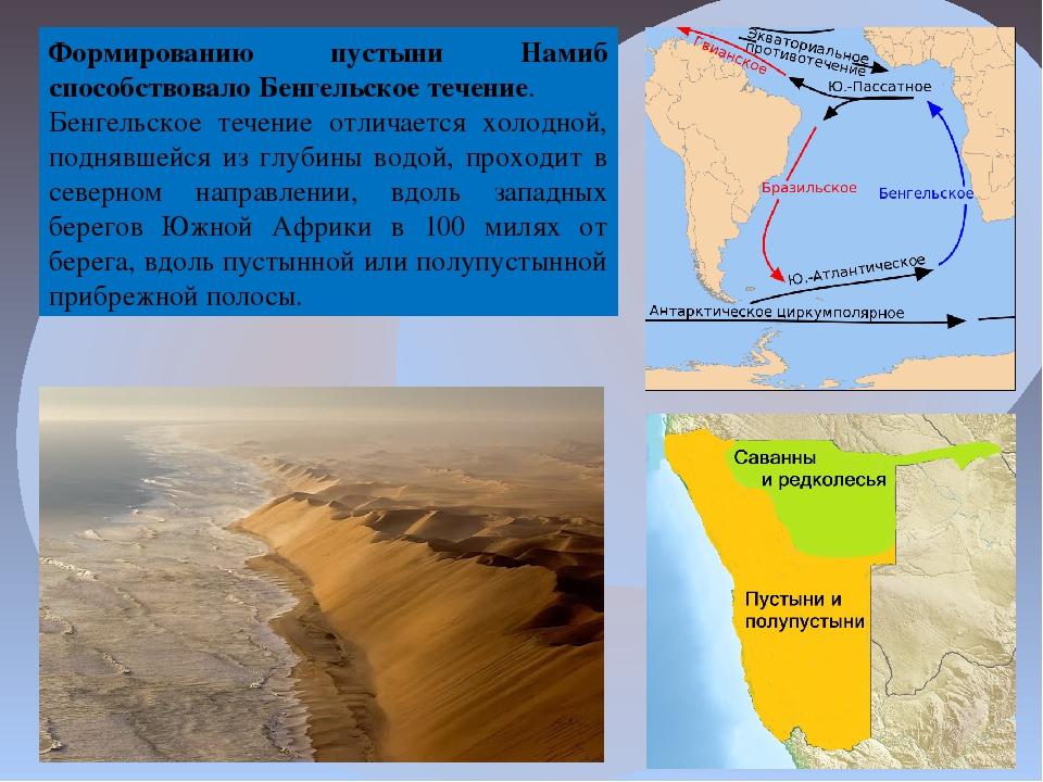 Формированию пустыни Намиб способствовалоБенгельское течение. Бенгельское те...