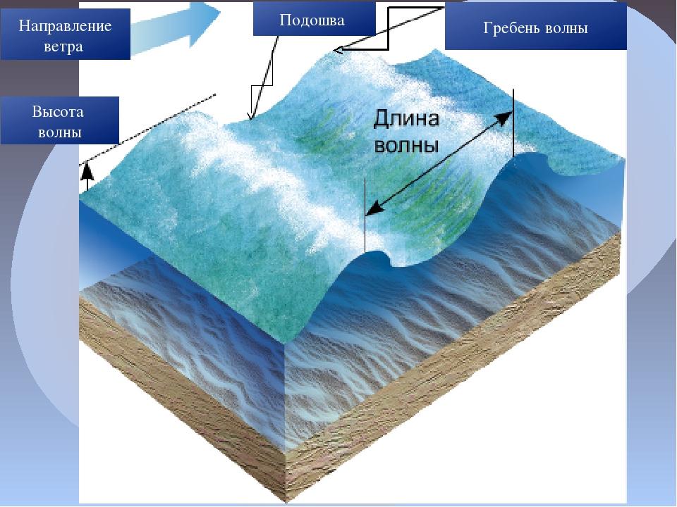 Высота волны Гребень волны Подошва Направление ветра