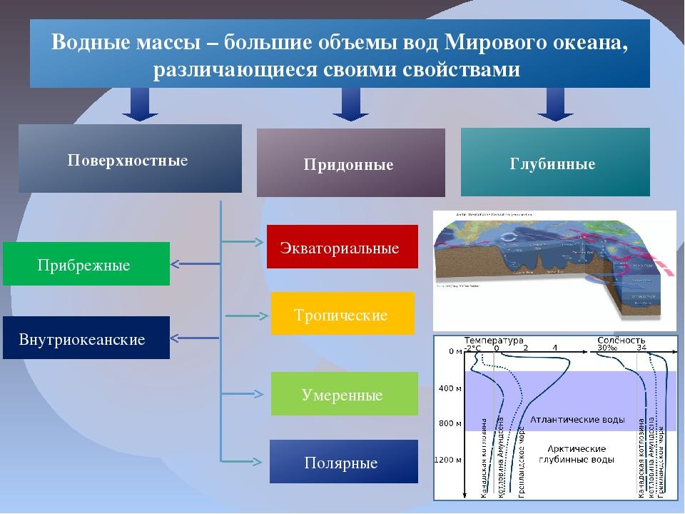 Водные массы – большие объемы вод Мирового океана, различающиеся своими свойс...