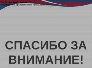 СПАСИБО ЗА ВНИМАНИЕ! Автор проекта: Михайлов Артём. Руководитель проекта: Кон