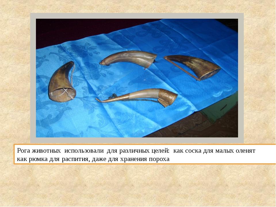 Рога животных использовали для различных целей: как соска для малых оленят ка...