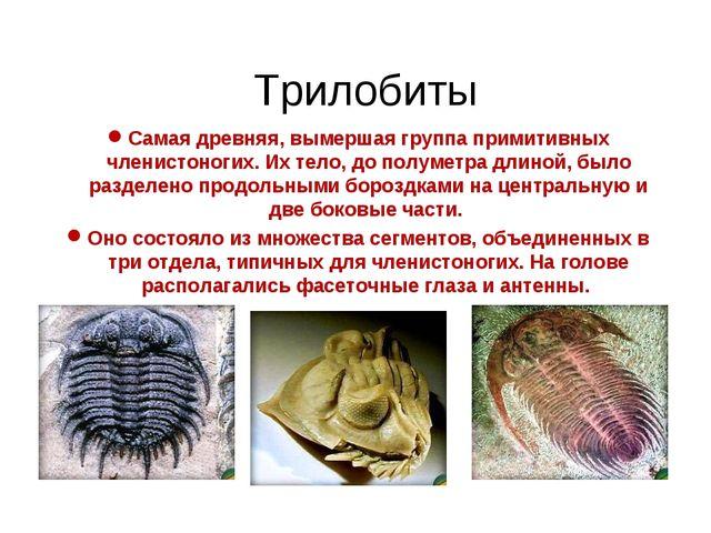 Трилобиты Самая древняя, вымершая группа примитивных членистоногих. Их тело,...