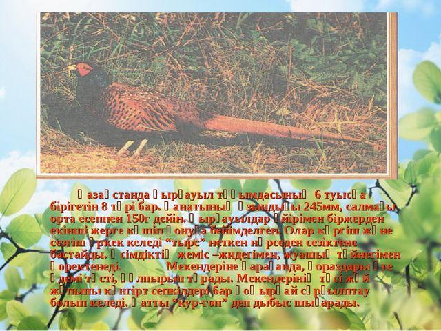 Қазақстанда қырғауыл тұқымдасының 6 туысқа бірігетін 8 түрі бар. Қанатының...
