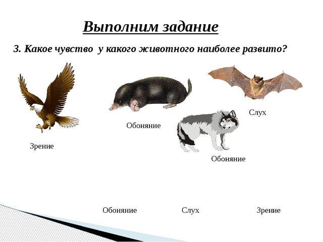 Выполним задание 3. Какое чувство у какого животного наиболее развито? Слух З...